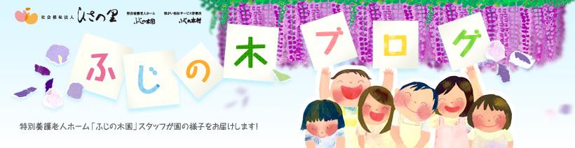 ふじの木ブログ